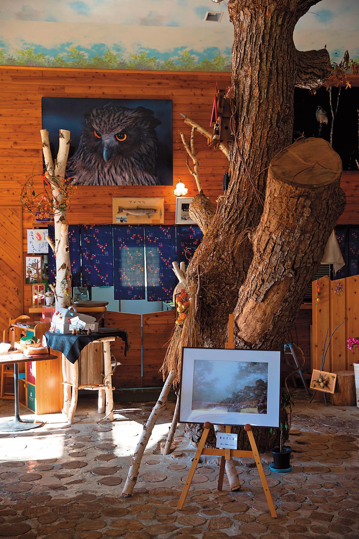 屋內有樹幹穿過,很有山林的自然氣氛。