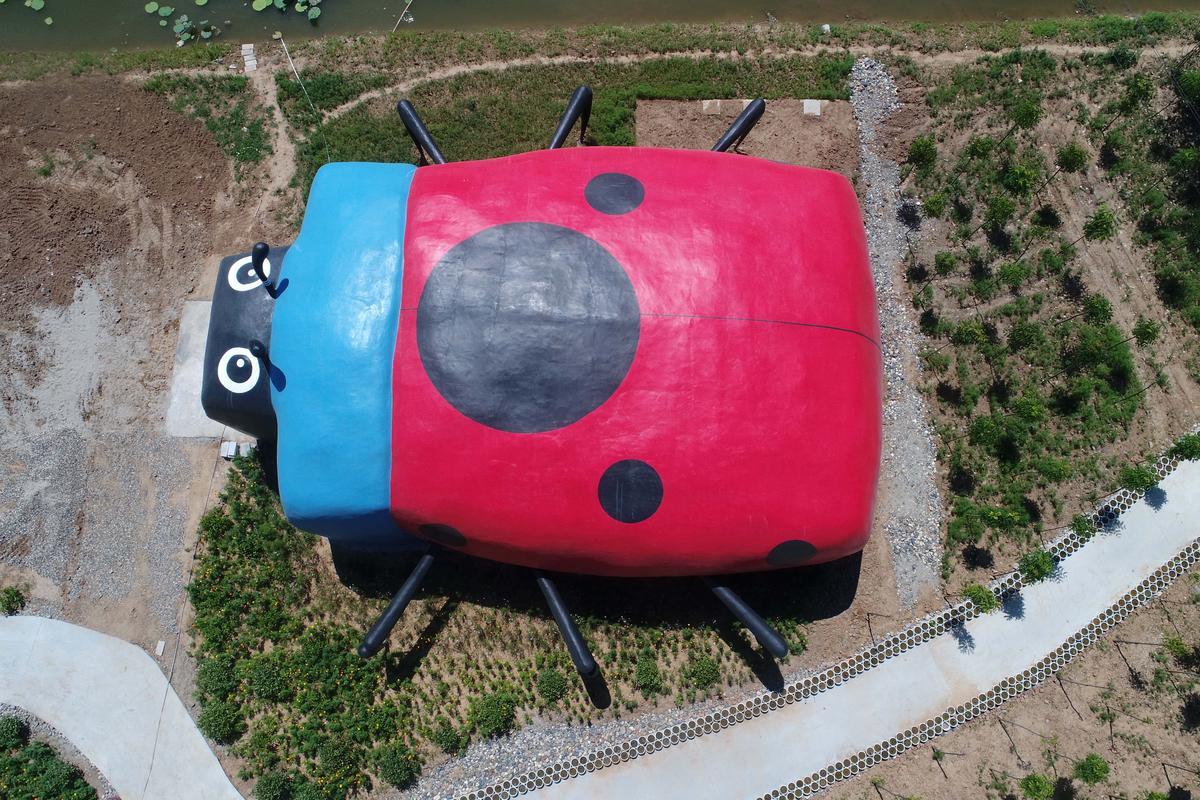 湖北省襄陽市一處鄉村農家樂景點內的七星瓢蟲造型公廁,按四星級廁所標準興建,一次可同時容納百人如廁。不過進入農家樂園內遊玩要收門票費20元,可以說是最貴的農村廁所。