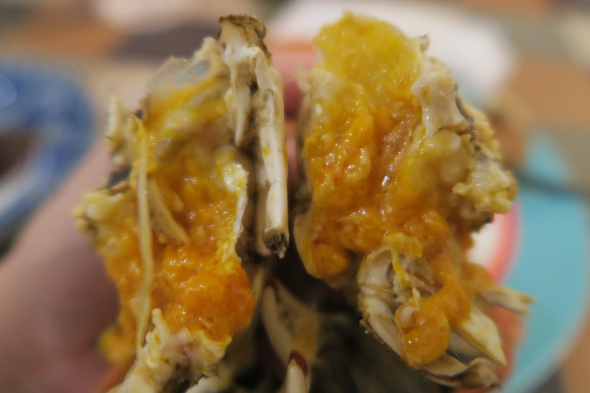 吸吮大閘蟹的白膏,是饕客一年一度的享受。