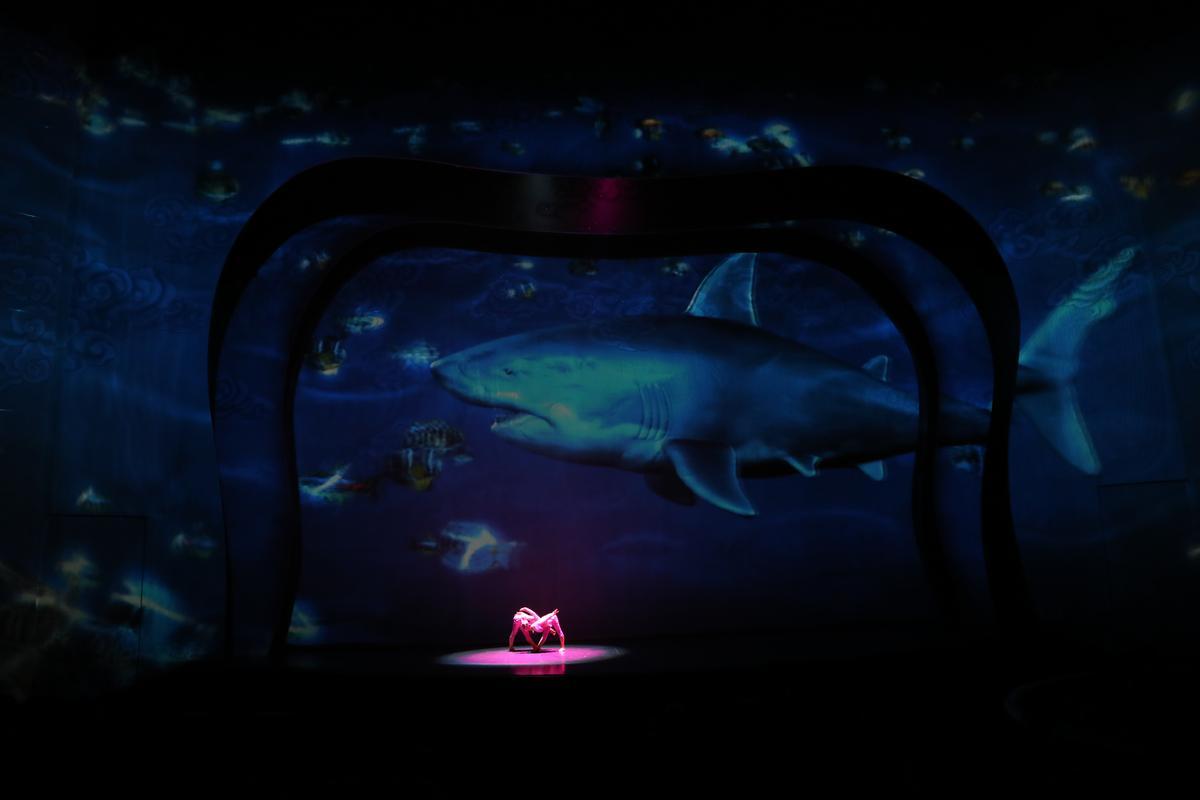 海底龍宮的鯊魚巨大逼真。