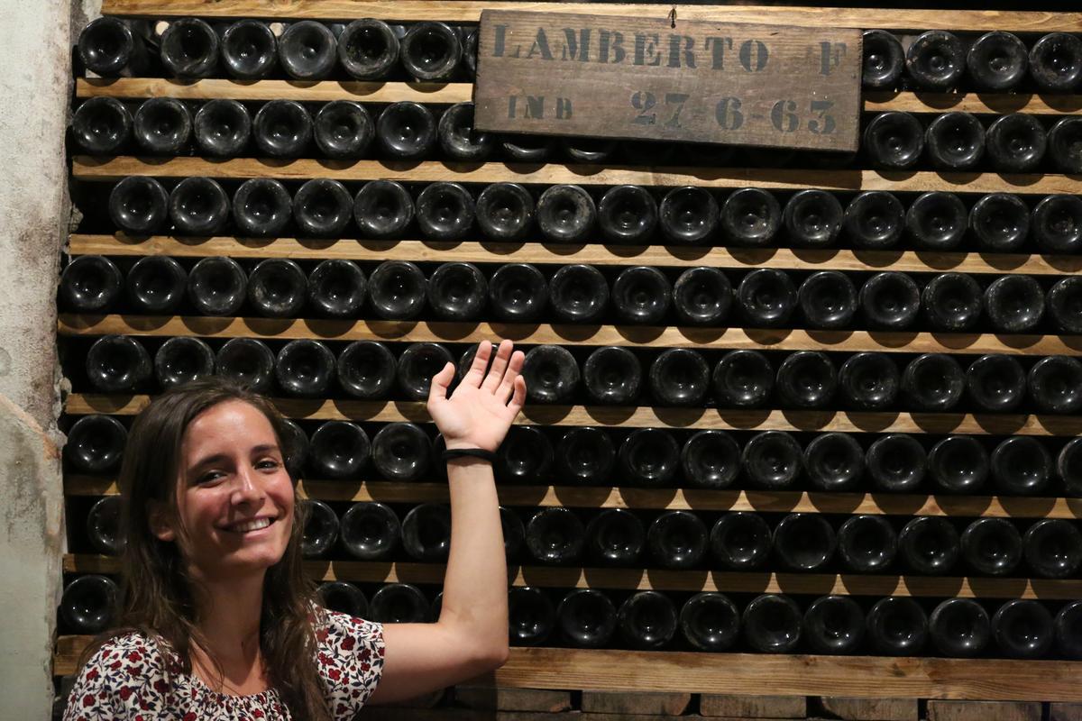 可愛的酒廠接待Giulia Tarquini向我們介紹佛卡提家族酒窖。圖為現任總裁的出生年份酒。