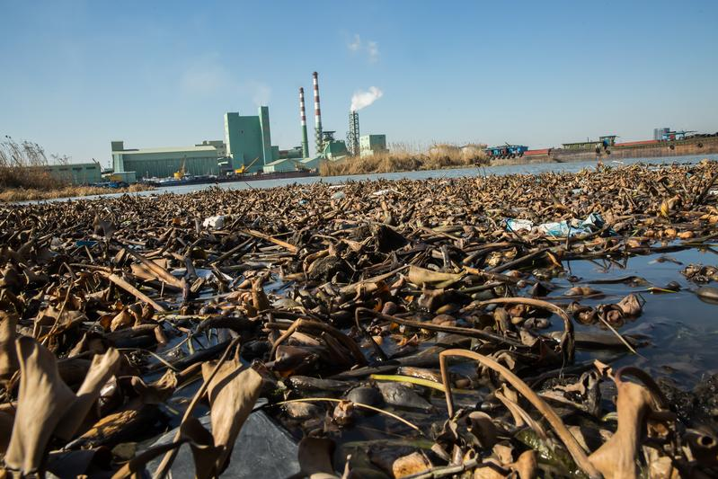 台商認為,中國汙水排放標準比台灣更嚴格。