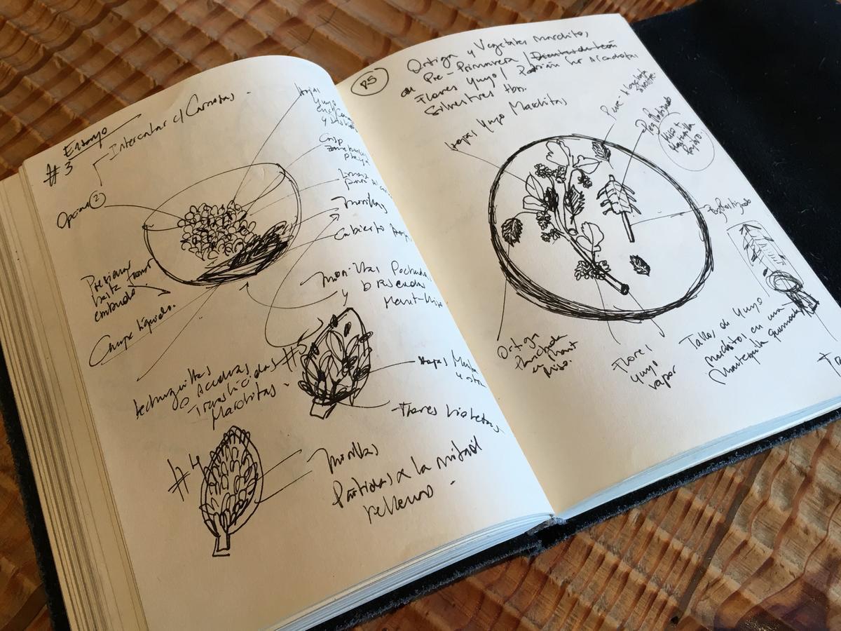 Rodolfo上山下海尋找各種鮮為人知的食材並加以記錄,就像個地理生物學家。