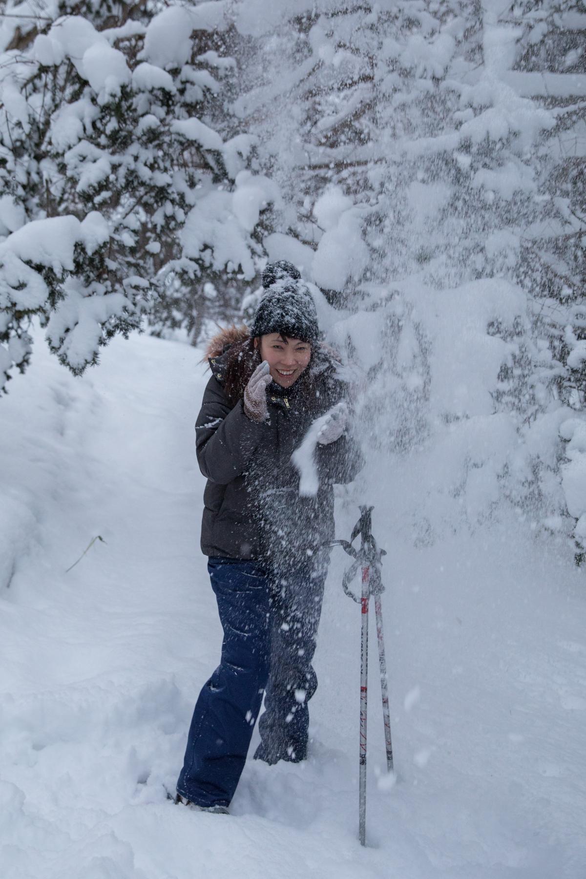松樹上的雪塊,瞬間掉落。