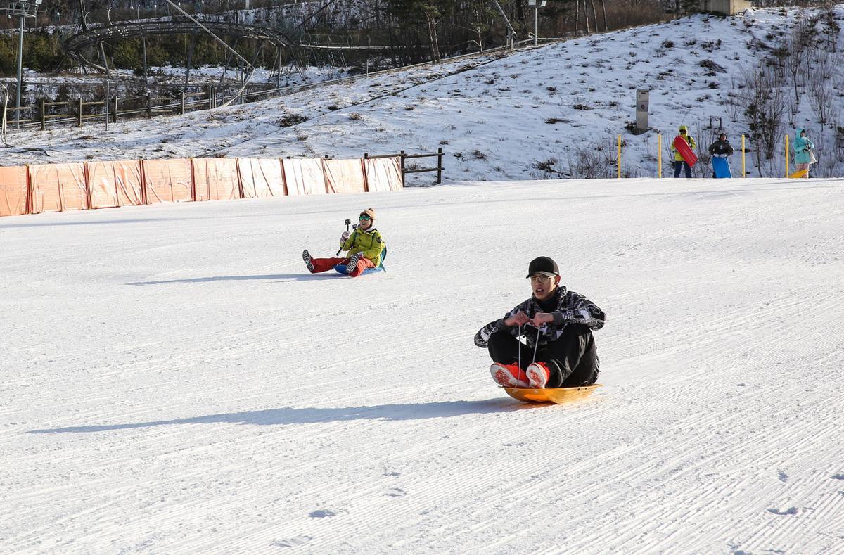 小朋友或是不會滑雪的大朋友,也能盡情享受坐在雪盆上的小飆速快感。