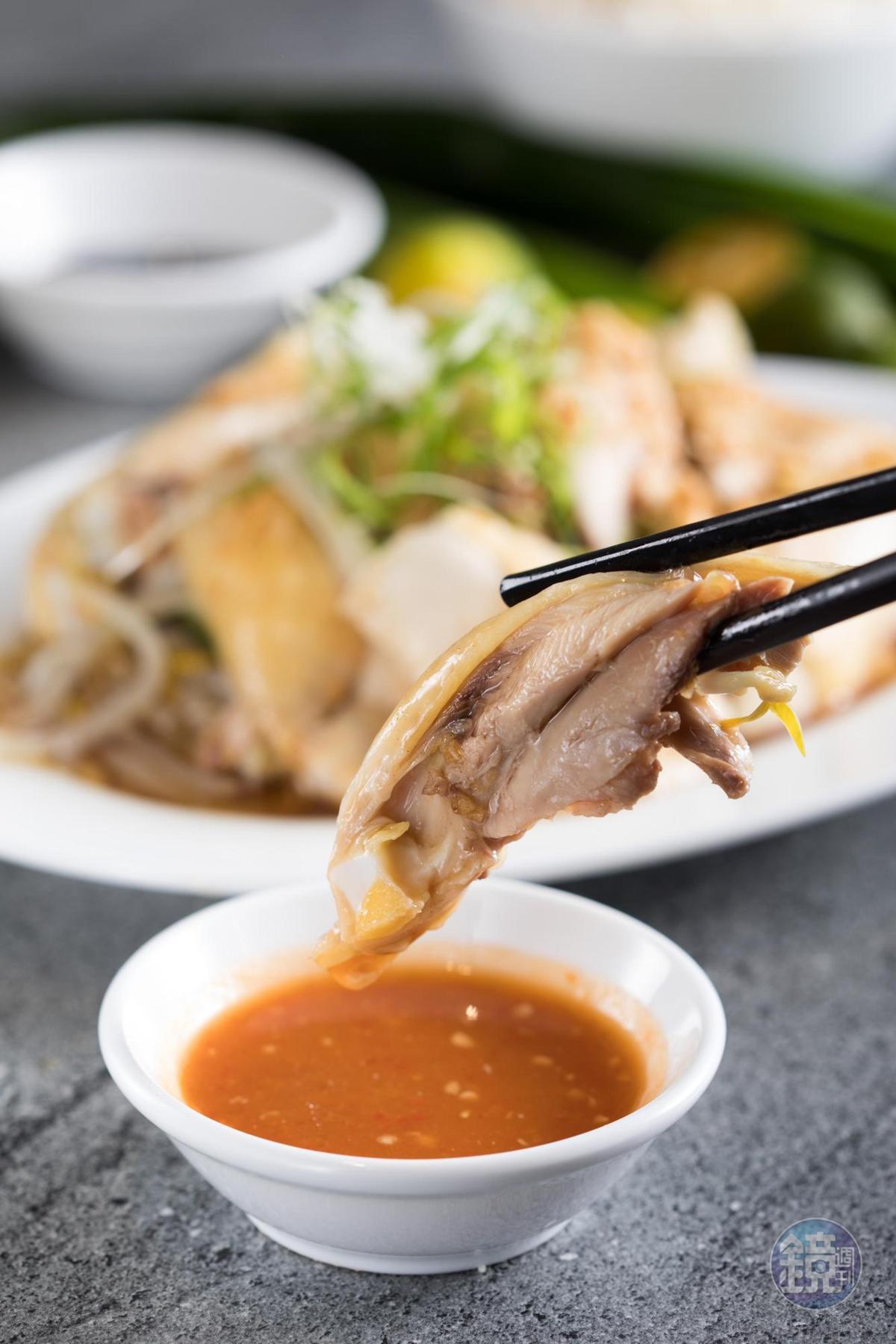 「海南雞」選用黃土雞,皮滑肉嫩,蘸點以金桔調製的酸辣醬,甘甜辣口。(250元/1/4隻)