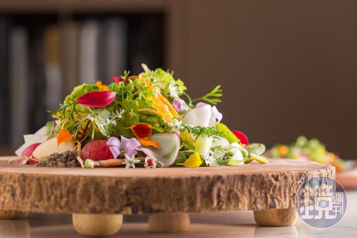 加了炸南瓜花、雞屎藤花、漬蘿蔔等食材的「MUME沙拉」以馬告香料、豆豉粉末調味,勾出了沙拉的鮮味,每一口都滋味層疊,風味不同。(MUME,480元/份)