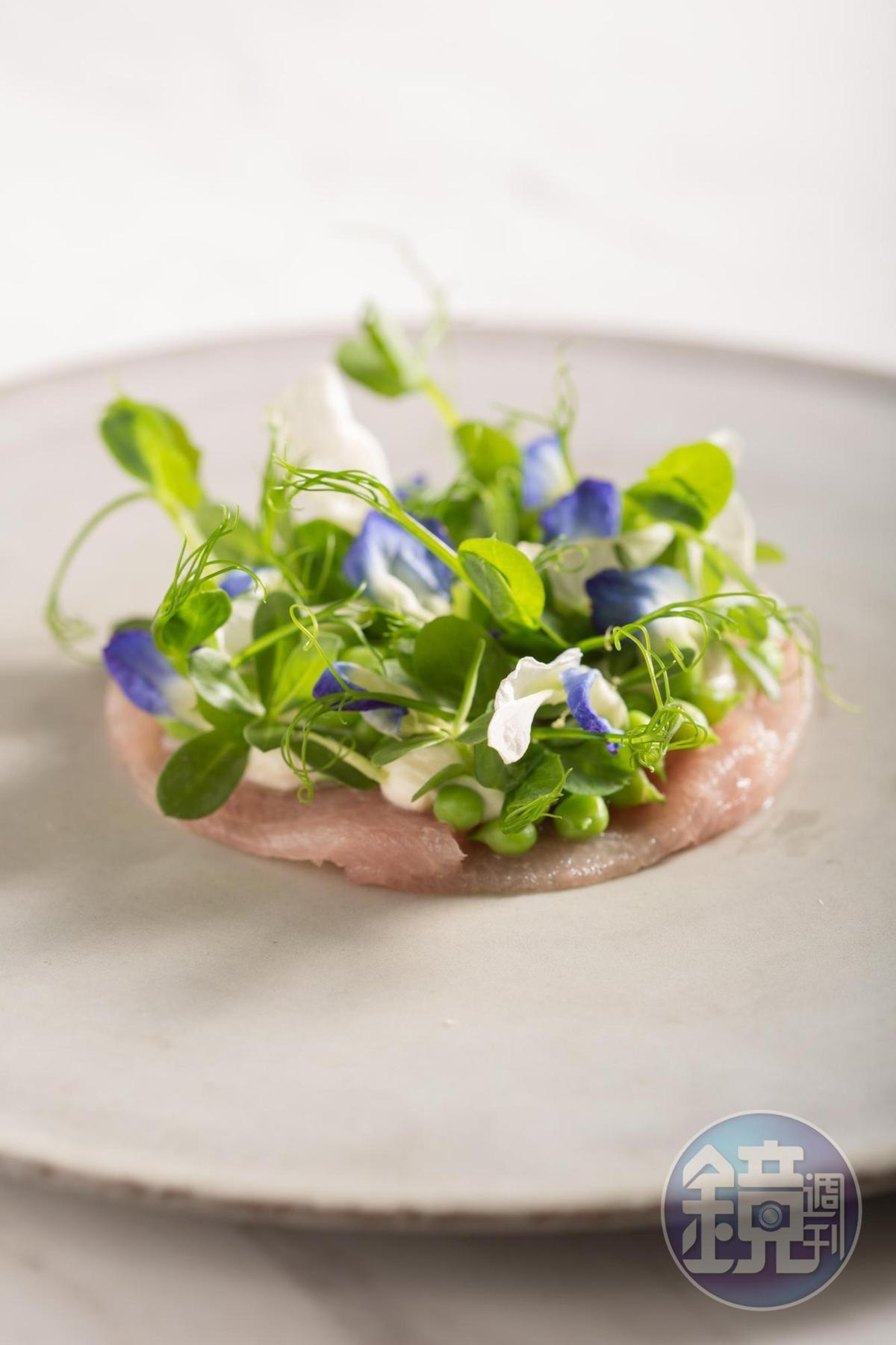 「白旗魚豆苗花煙燻起司」加入富有甜豆味的花朵,把白肉魚的油脂轉為輕盈。(MUME,2,880元套餐菜色,不定期提供)