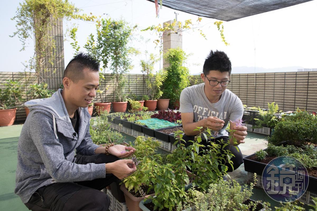 Hero Restaurant創辦人之一蕭淳元(左)是廚師也是農人,實踐從種植到料理的他充滿熱情,堅持以親自種植的花卉入菜。