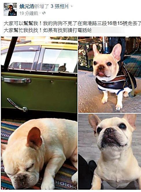 王心凌與姚元浩還在一起時,姚元浩曾不慎弄丟她的愛犬,雖然後來狗找了回來,但親友對姚全投不信任票。(翻攝自姚元浩臉書)