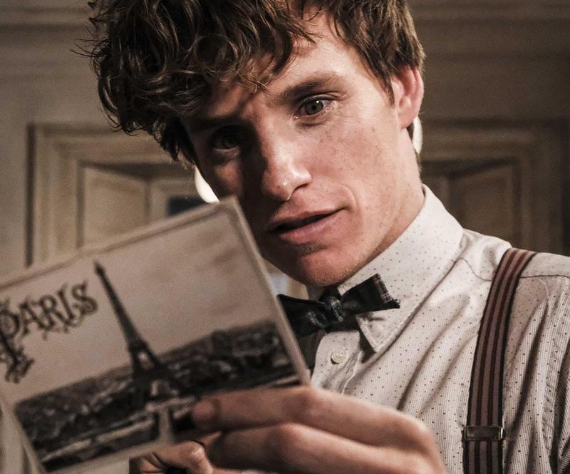 艾迪瑞德曼回鍋飾演紐特斯卡曼德,而從他手上拿的明信片可以知道,這一集的故事會發生在巴黎。(華納兄弟)