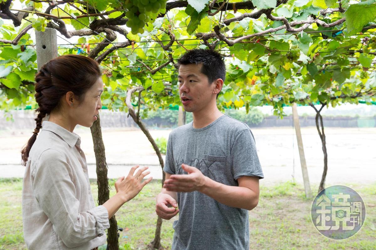 威石東執行長楊仁亞(左)為稗田解說葡萄的生長情形。