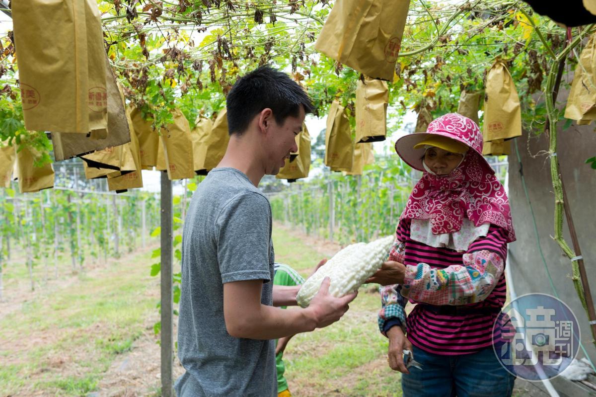 熱情的農友阿桑送給稗田自家種的白玉苦瓜。