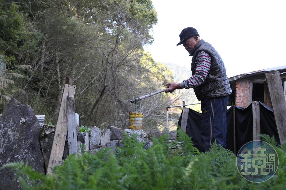遇到朱萬鶴的時候,他正在種田,生活上幾乎可以說是自給自足。
