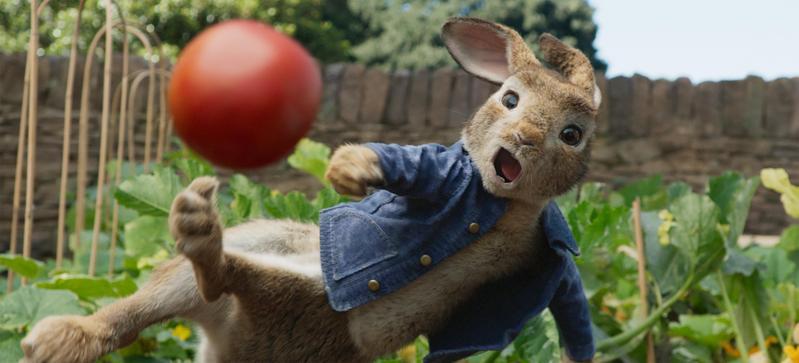 暢銷全球的經典童書《比得兔》,原著作者碧雅翠絲波特多次婉拒拍成電影,經過多年後終於拍成了真人版的動畫電影。(索尼影業)