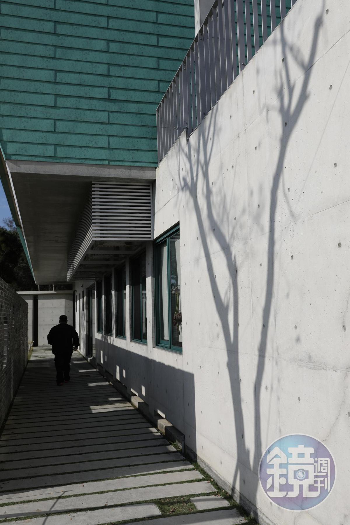 樹影搖曳清水模牆面,自然畫作引人佇足。