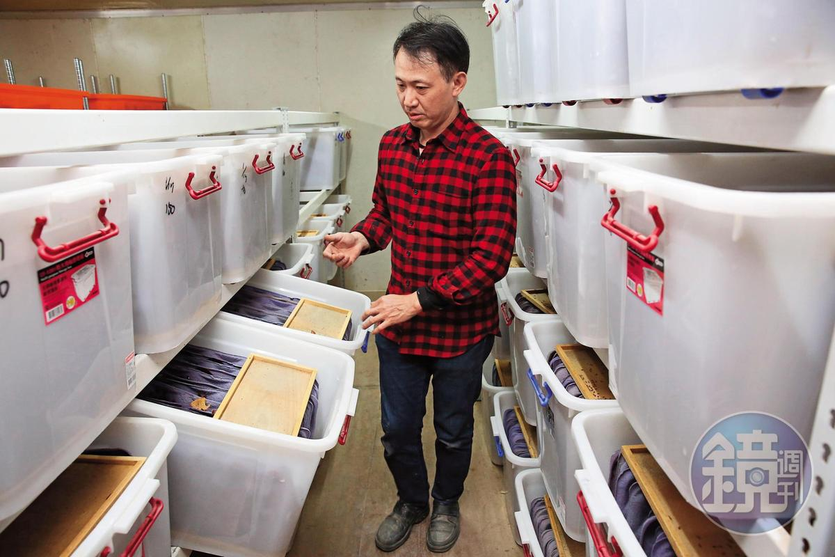 謝瑋晏是全台最大的蟑螂培養戶,廠區內共有超過270萬隻蟑螂。