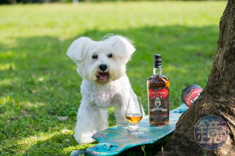 萌狗跳上酒標,搖身為威士忌的象徵符號。