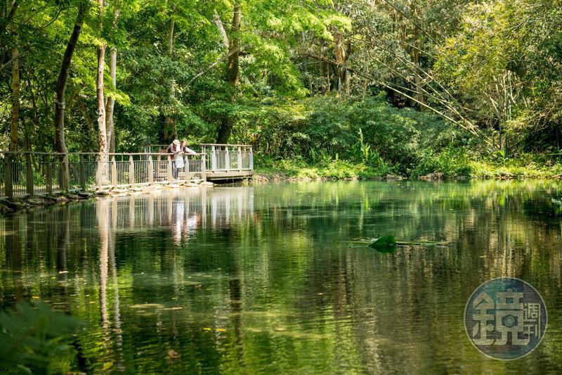 「四十二分湧泉自然生態步道」有種靜態美。