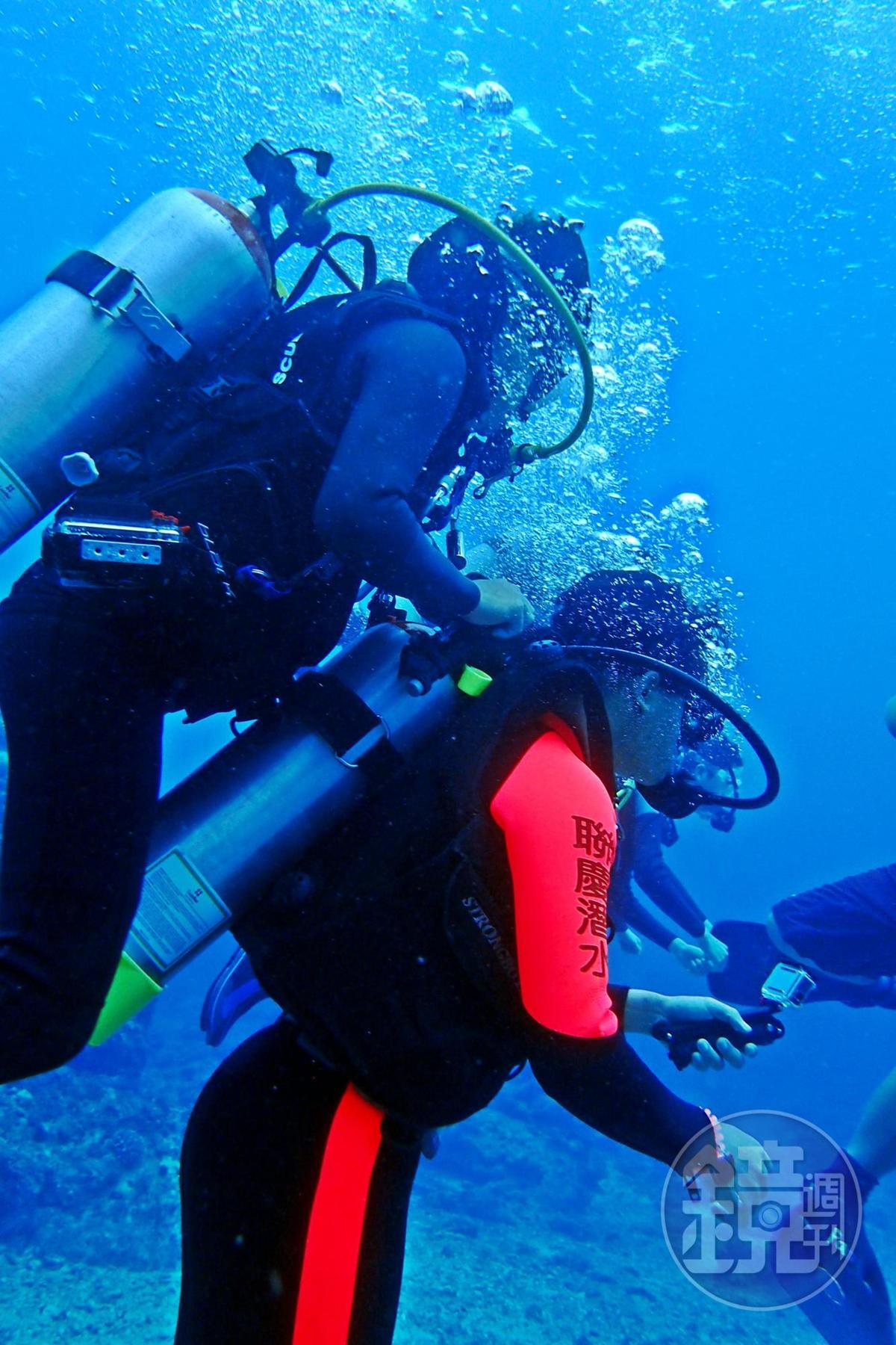 不會潛水的人,可以參加體驗潛水行程,由教練帶著你游。