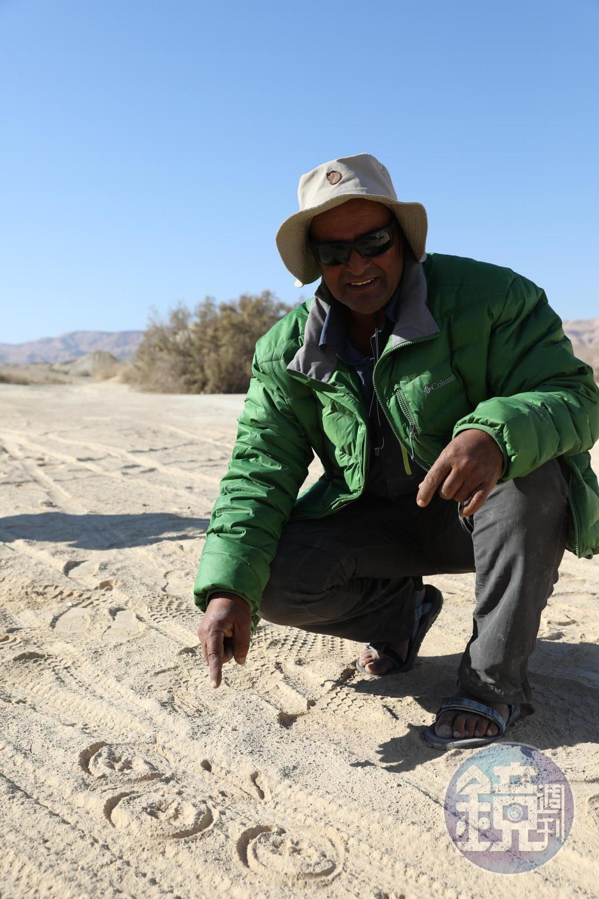 阿里指著腳印說這是努比亞羱羊路過的痕跡。