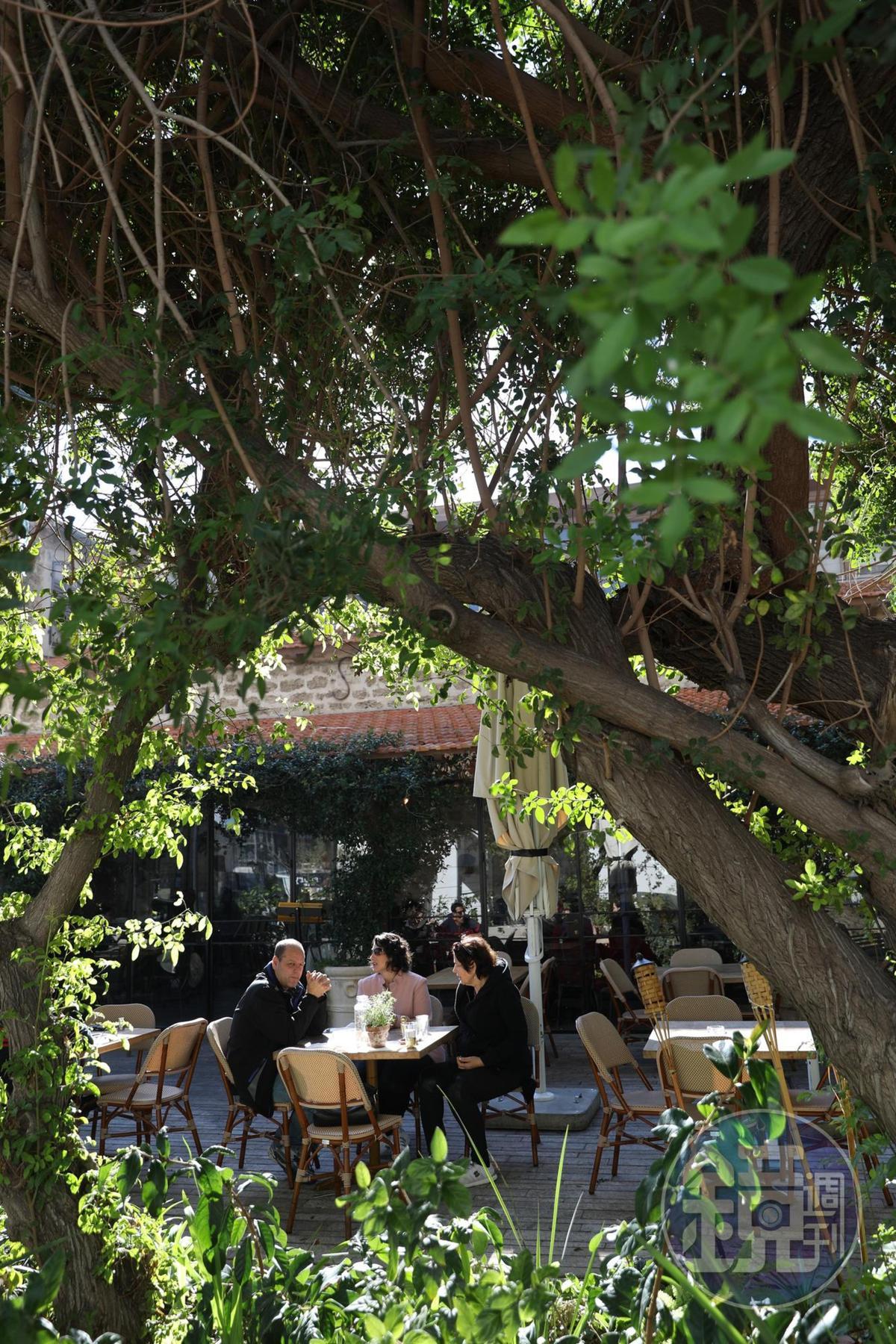 園區裡的餐廳大都設有戶外區,讓食客籠罩在溫暖綠意與陽光中用餐。