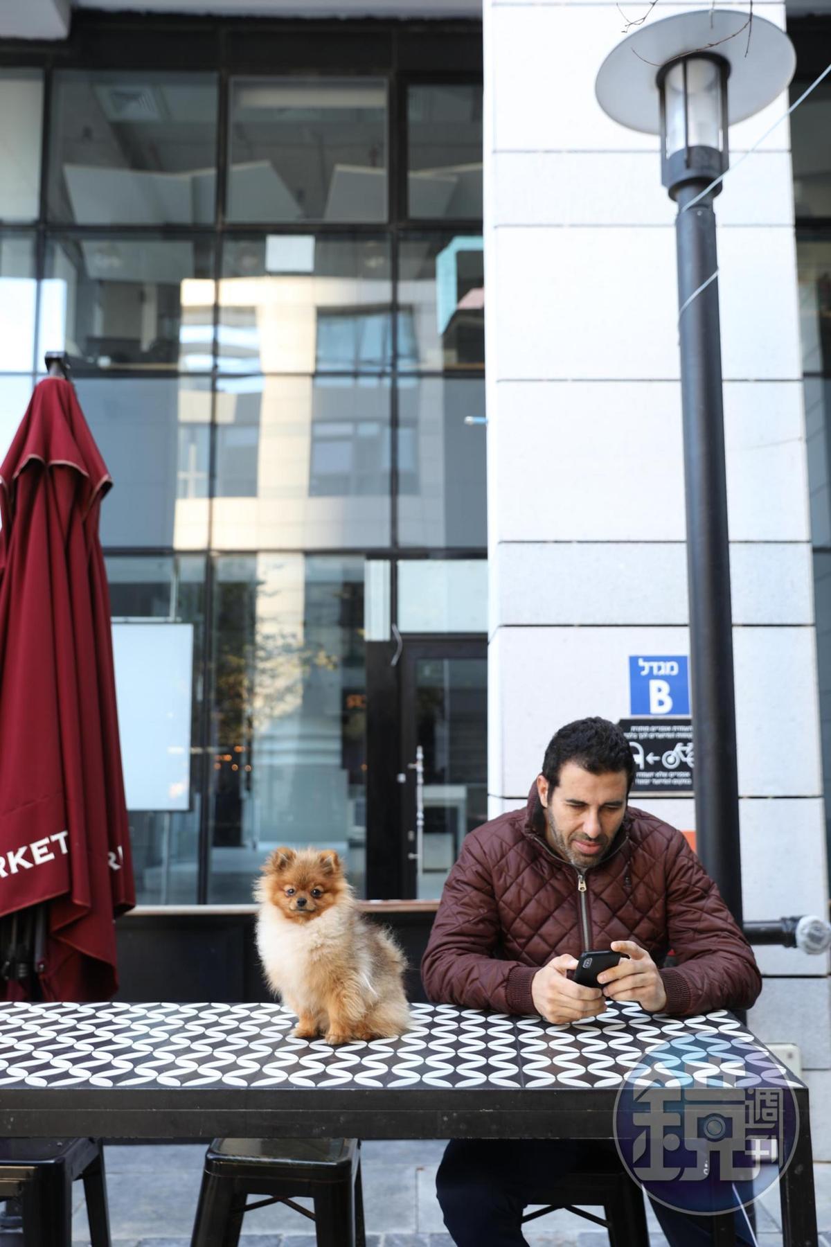 帶著寵物在市場外等人的男子。