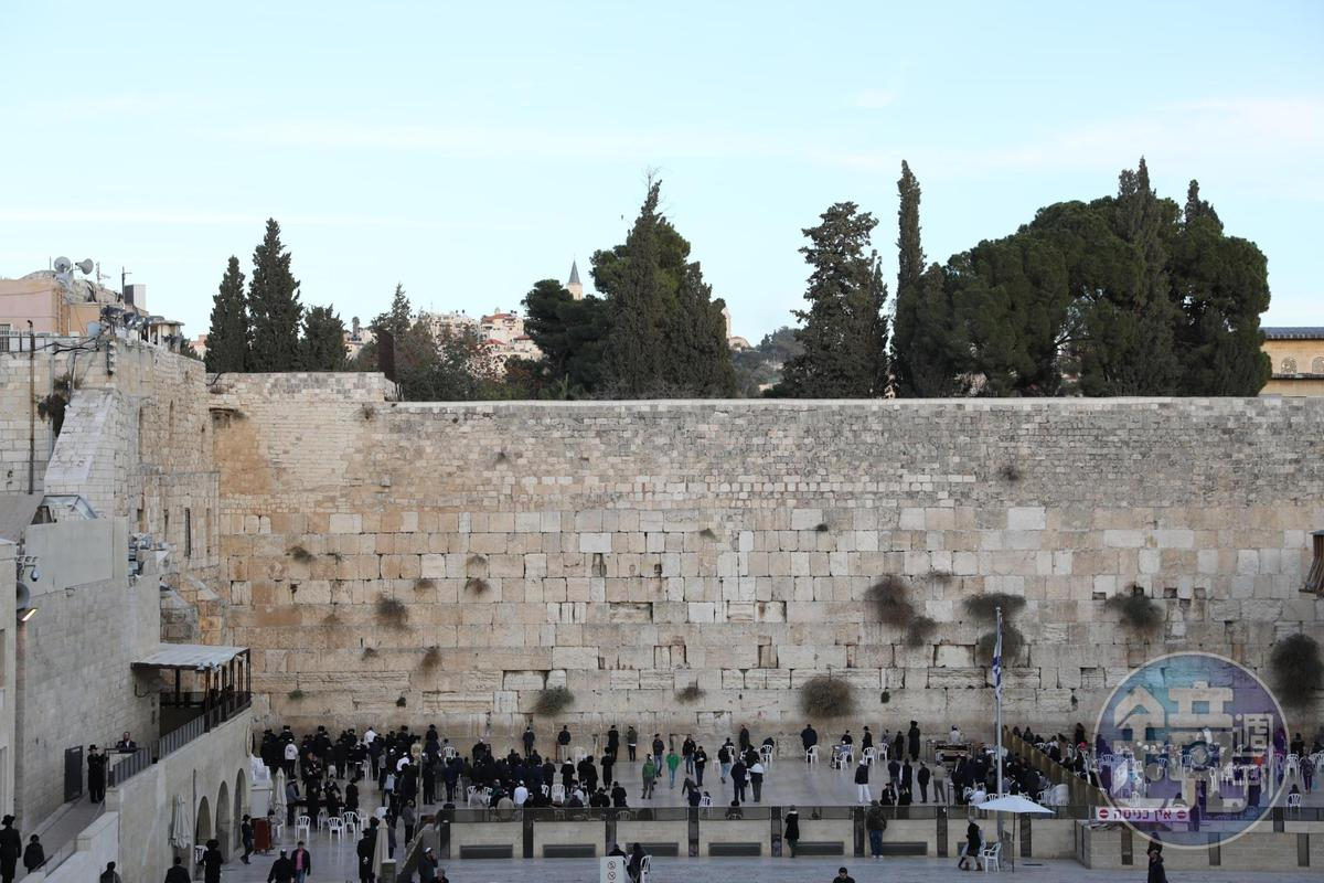 哭牆前的祈禱區被木頭隔板一分為二,男女需分開進入。
