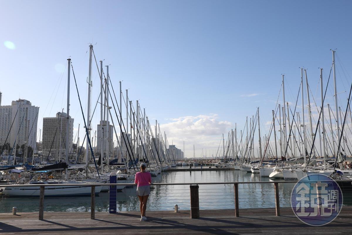 遊艇停泊的港口,洋溢地中海風情。