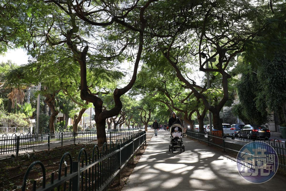 沿著綠蔭遍布的ROTHSCHILD大道散步,最能體會特拉維夫閒適的生活感。