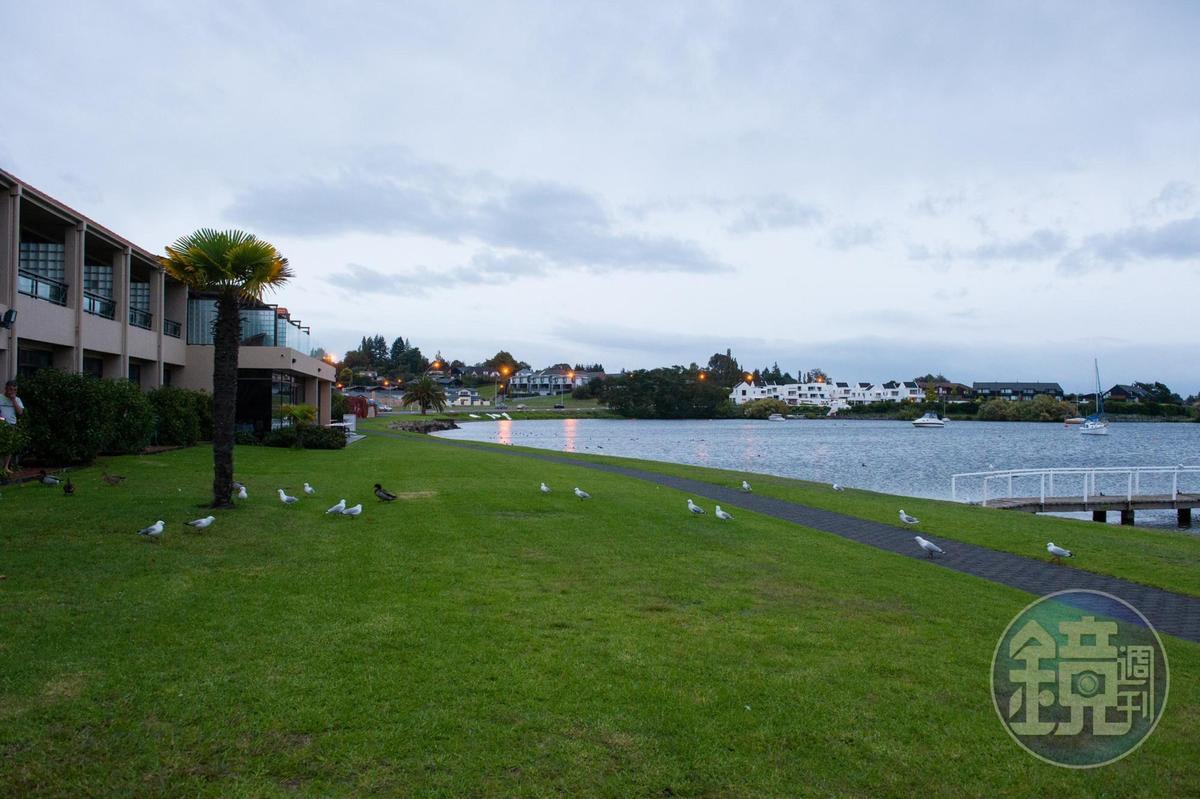 「Millennium Hotel & Resort Manuels Taupo」坐擁湖濱最前線風景。