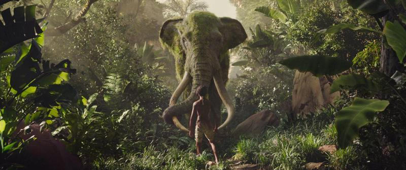 《毛克利》找來眾多明星替叢林裡的動物配音,凸顯主角處在叢林動物與人類之間,不知道如何尋找歸屬的矛盾。(華納兄弟)