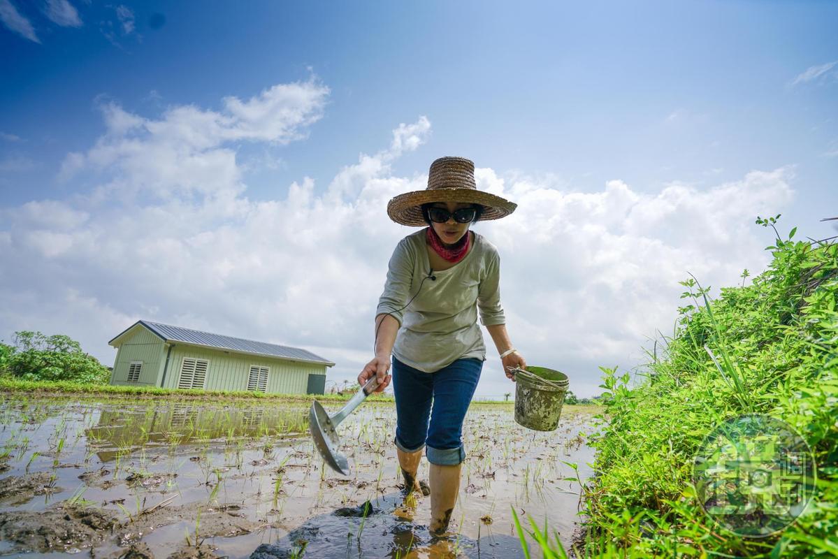 長期深入原鄉推動農業轉型的「台灣原味」創辦人吳美貌,陪伴部落找尋適種食材,土地復育的行動也鋪了一條路讓更多青年返家。