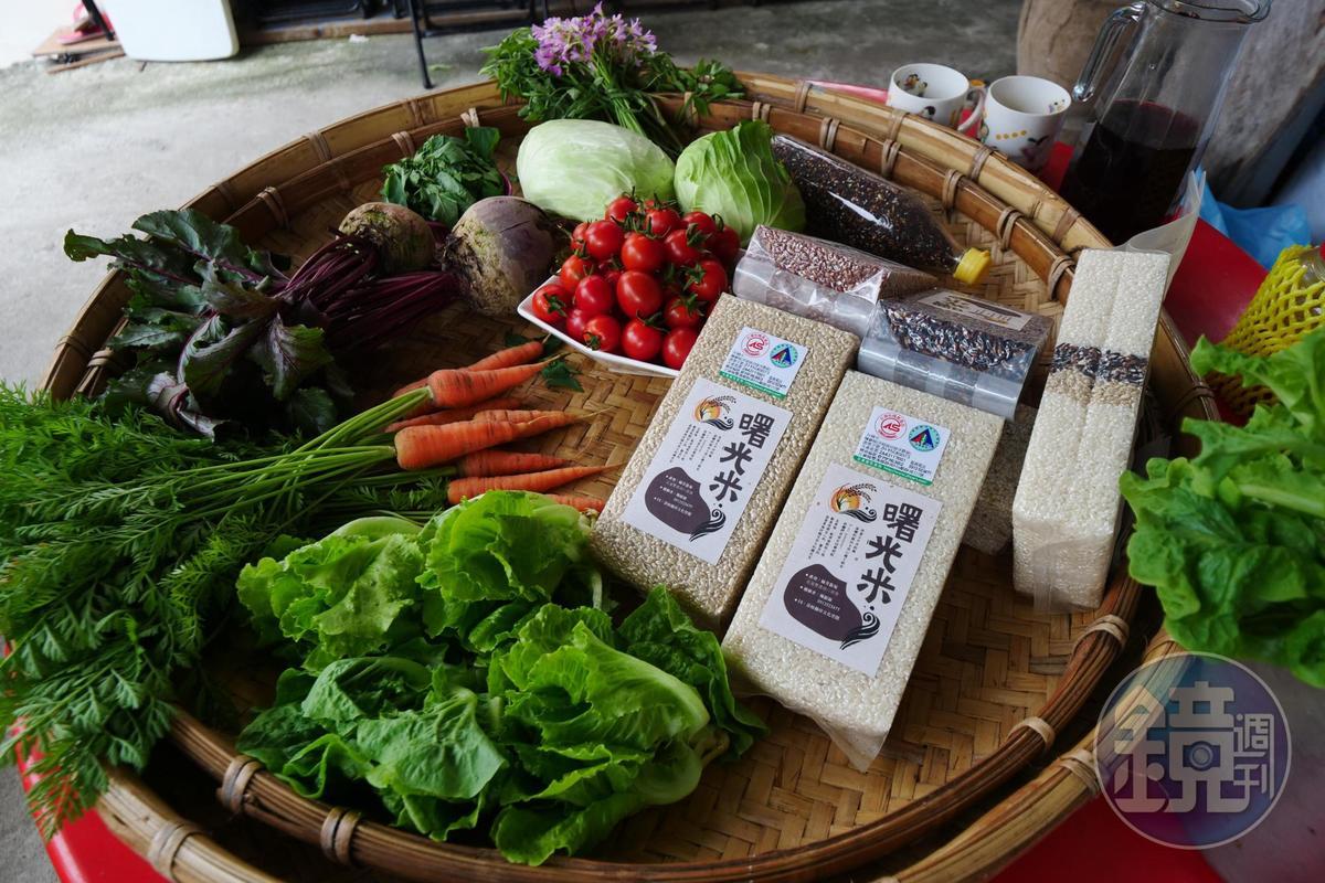 在部落水梯田採有機農法種植的「曙光米」。(莎娃綠岸,有白米、糙米、黑米和紅米,皆為230元/包)