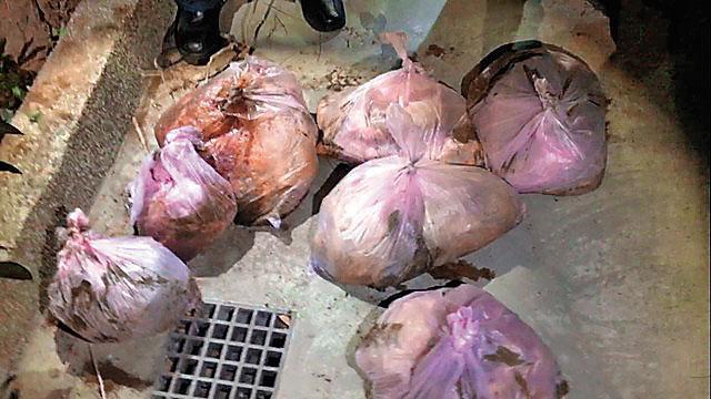 朱嫌將女友分屍後,將裝有屍塊的7個塑膠袋藏在住家後方花圃。(翻攝畫面)