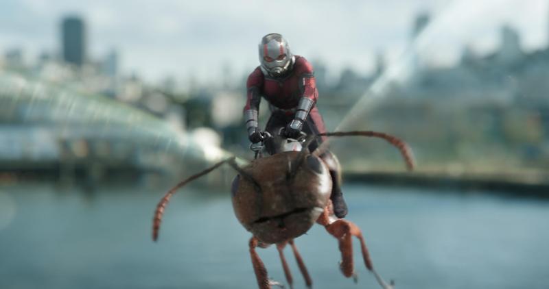 「蟻人」保羅路德騎上會飛的螞蟻,穿梭在市區打擊黑暗勢力。(迪士尼提供)