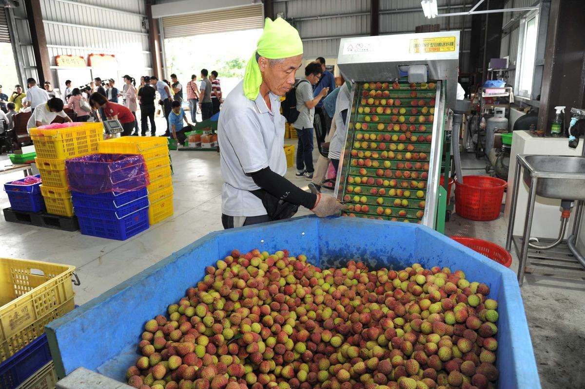 韓國瑜說他若當選要推「南南合作」,幫忙到東南亞、大陸南部找訂單,將農產品外銷出去。(高雄市政府提供)