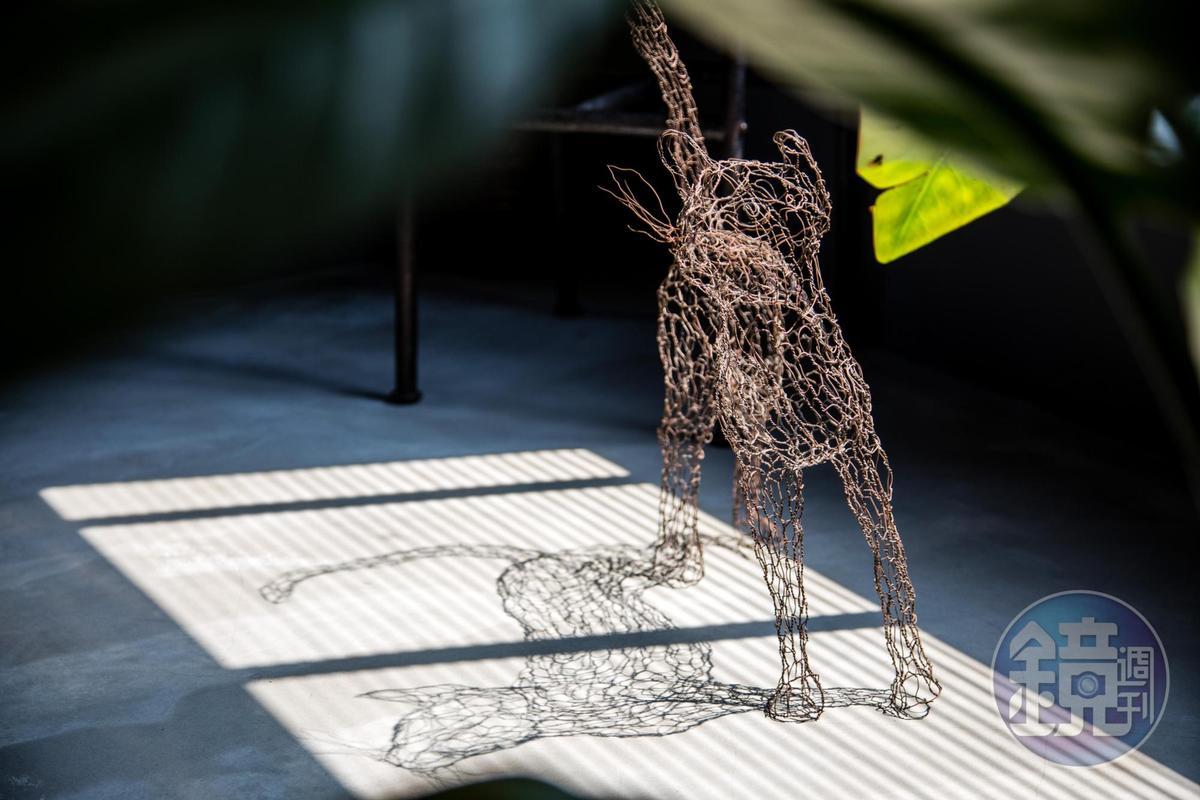 美國鐵線藝術家的貓作品,倒影浮躍地面,虛實都是藝術。