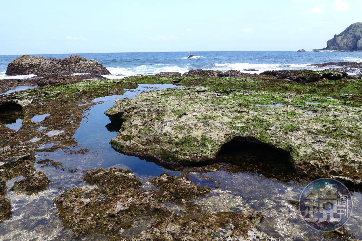 退潮時前往藍洞,途經凹凸不平的礁岩。