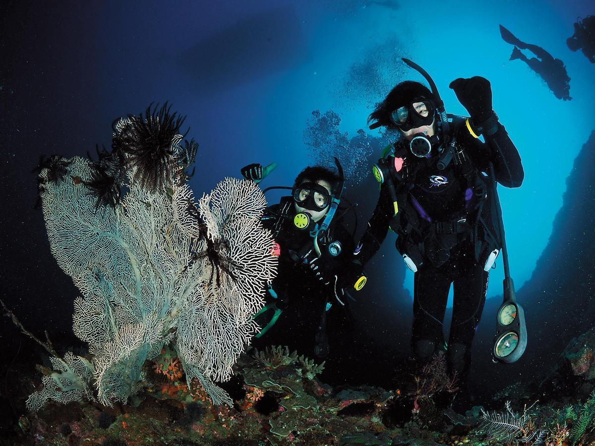 墾丁的海底生態景觀豐富,讓許多潛水客趨之若鶩。(騏艦藍海灣提供)