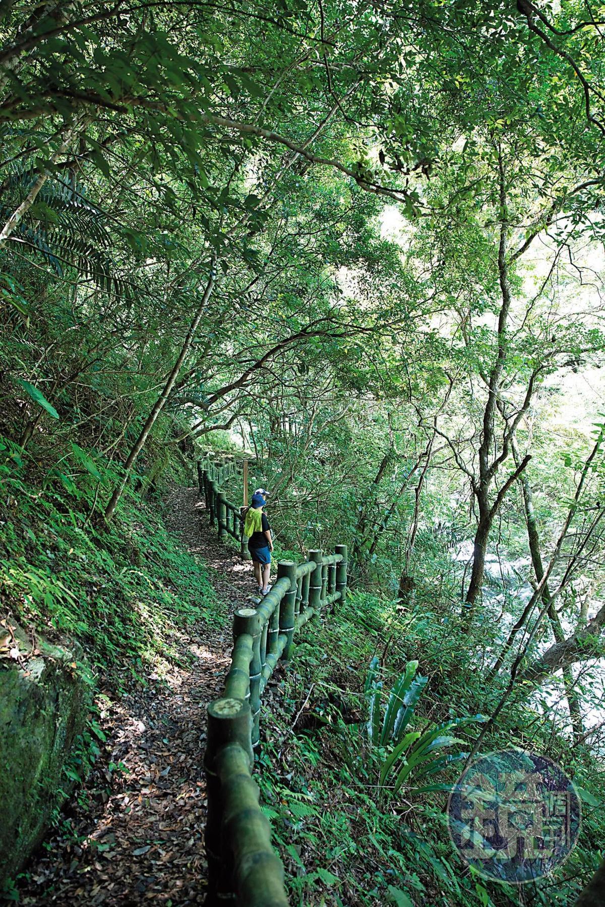 通往幽靈瀑布的步道,建置護欄,行走相當安全。