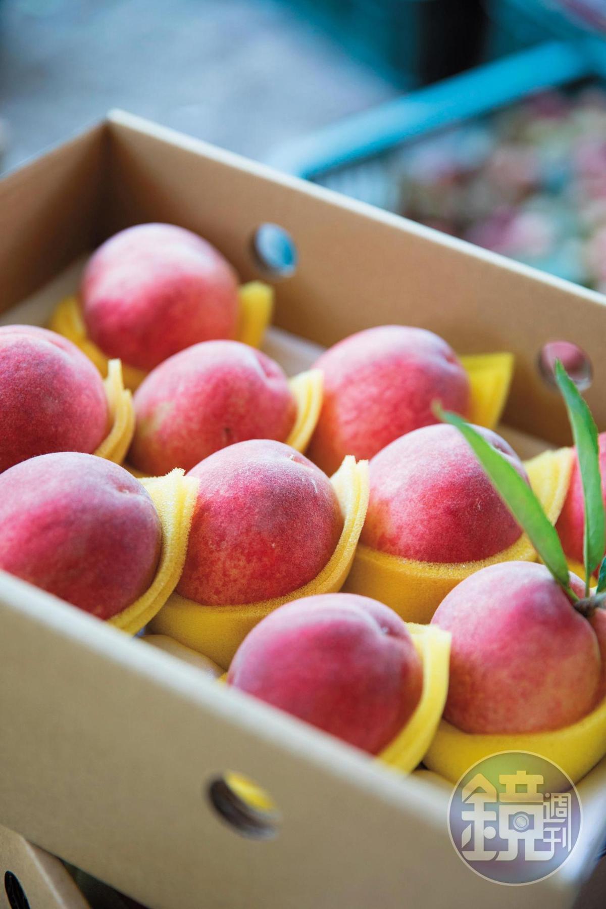 每年6~8月為水蜜桃產季,細皮嫩肉又多汁,很誘人。