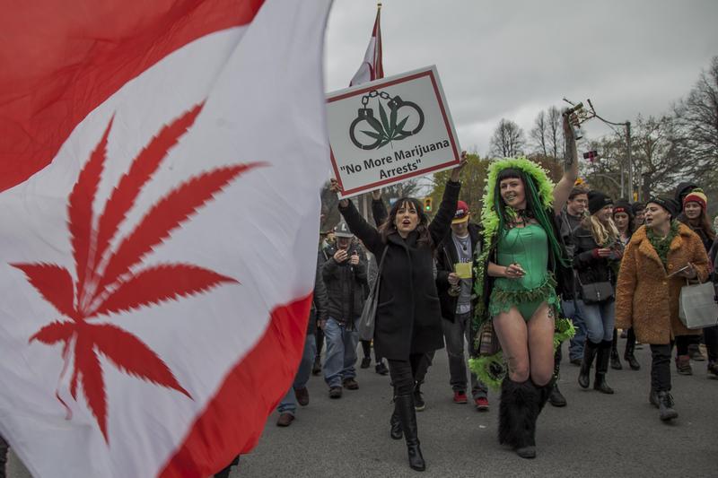 2017年5月6日,加拿大多倫多的「全球大麻遊行」,支持者上街頭主張全球團結推揚和教育大眾認識大麻文化。(東方IC)