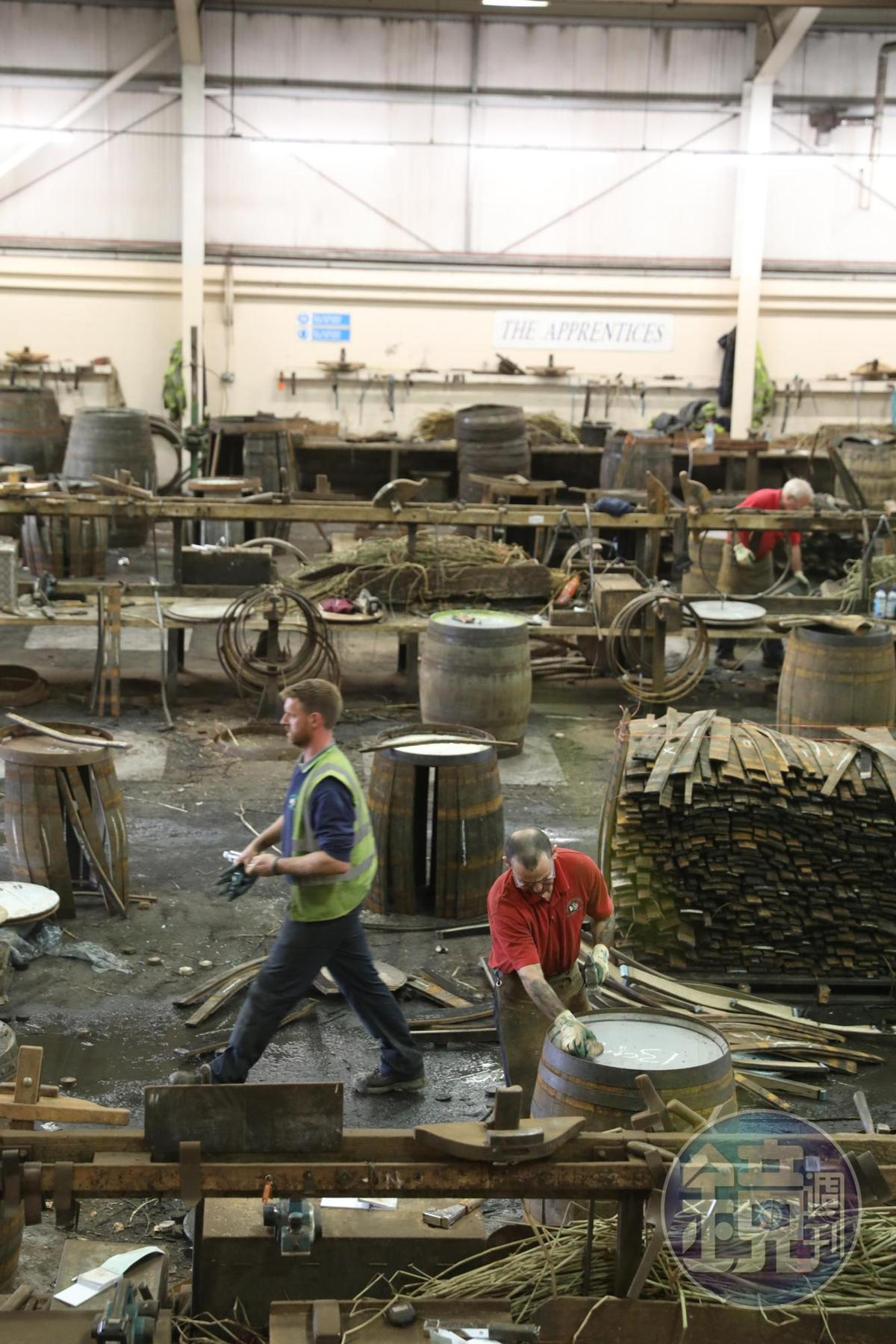 世界上有50多種橡木,其中只有少數幾個品種,而且樹齡必須在100到150年之間,才適合做成橡木桶。