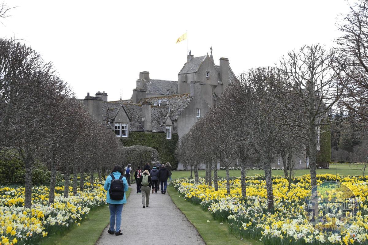 通過一片美麗花圃,才能抵達城堡。