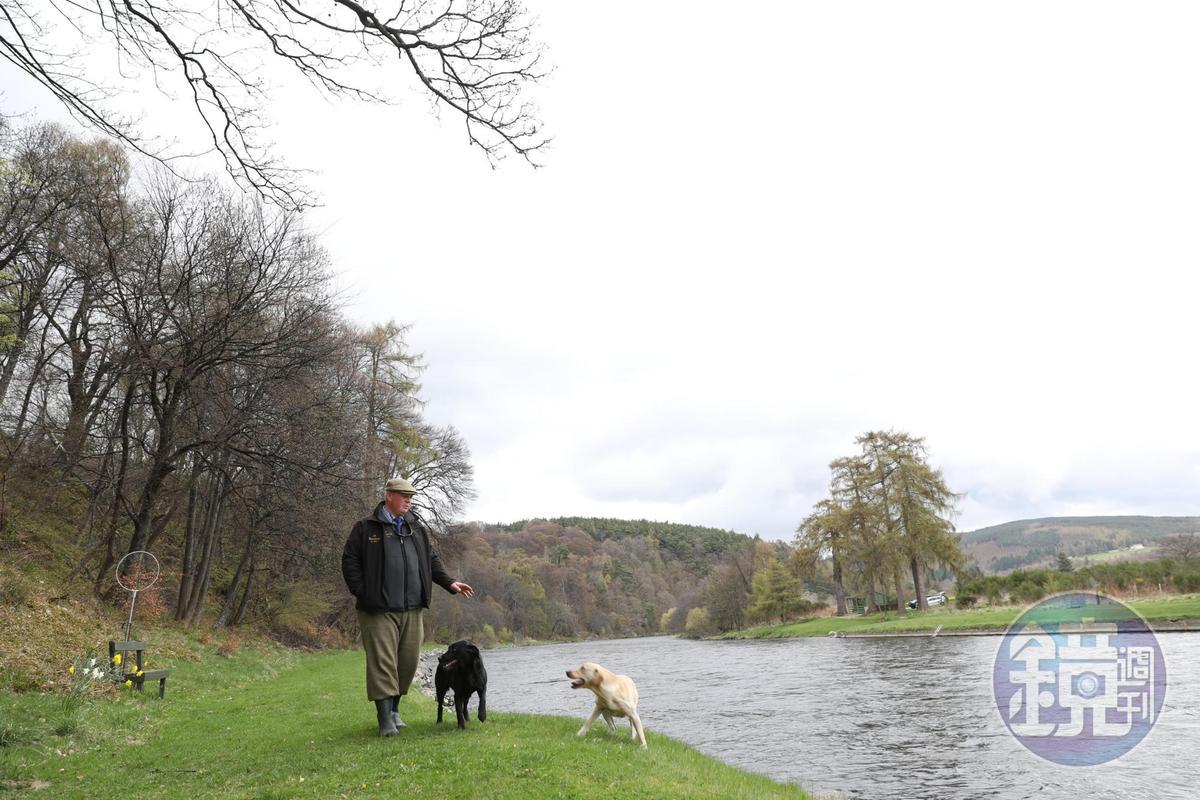 麥卡倫的Ghillie Robert每天固定帶著兩隻愛狗巡視斯貝河岸,守護釣客的安全。