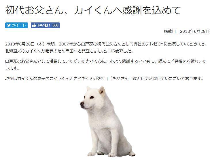 白戶家的爸爸,狗明星「海君」在 28 日早上離世。(翻攝自 Softbank 官網)