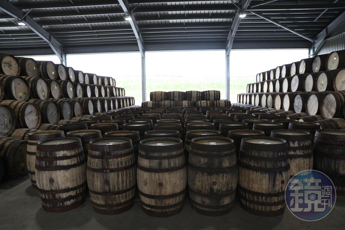 麥卡倫對橡木桶非常重視,以後也將建立自己的製桶廠。