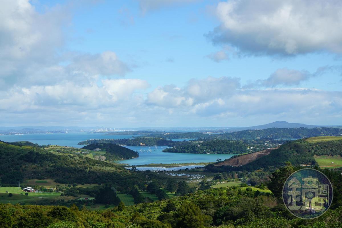 Waiheke Island美得像仙境,每年吸引超過百萬人次造訪。