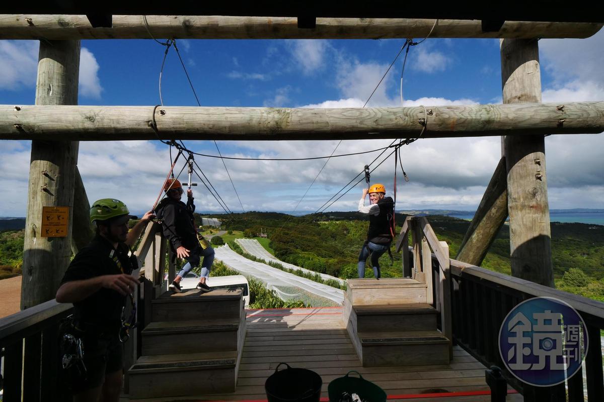 到Waiheke Island務必要體驗刺激的高空滑索。